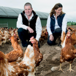 A cracking business mentor for Border Eggs